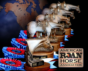 2020 ARHA World Champions