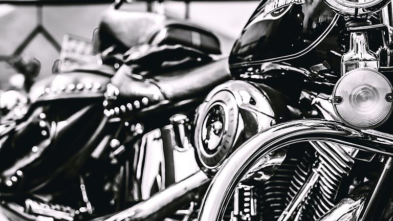 Harley Davidsons - The World of Custom Bikes