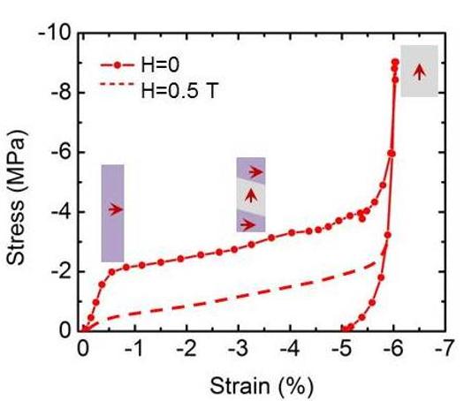 Elasto-magnetic coupling in FSMAs.png