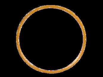 ring-3.png