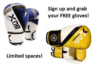 Free Gloves2.jpg
