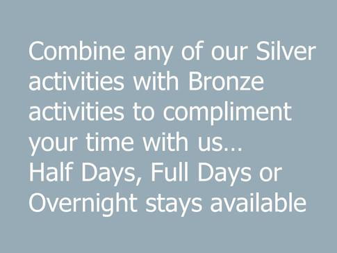 Silver wording.jpg