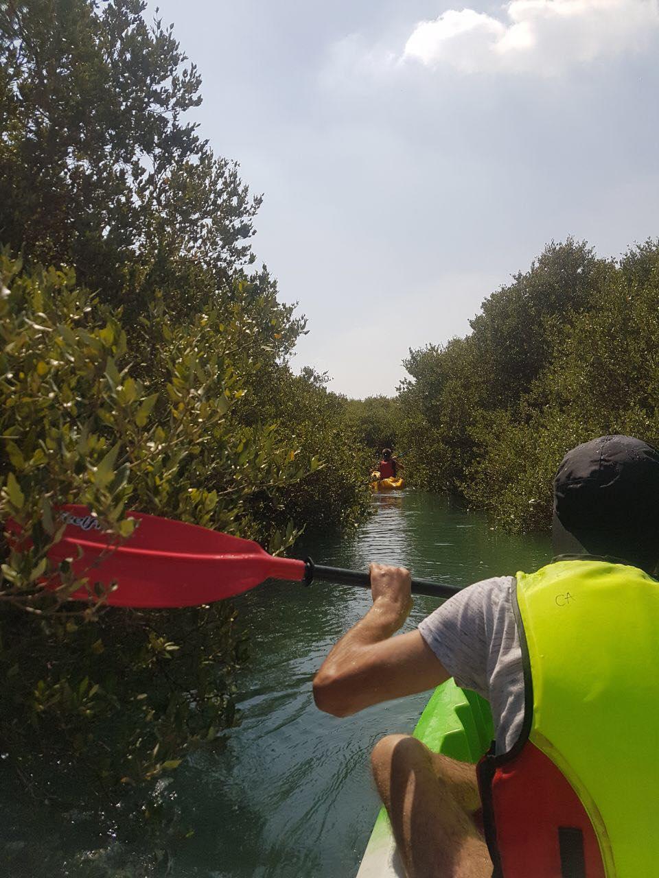 Eco Kayaking