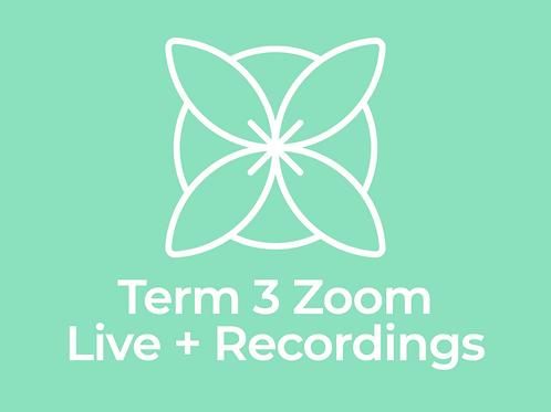 Term 3 Zoom Qigong & Tai Chi Live + Recordings