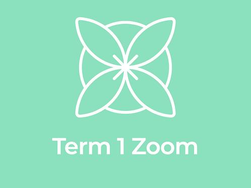 Term 1 Zoom Qigong & Tai Chi