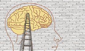 Evaluation mentale