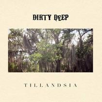 Tillandsia : au coeur du heavy blues avec Dirty Deep