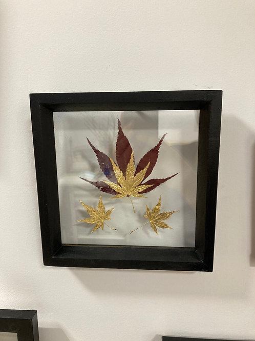 Cadre feuilles d'érable du Japon petit format