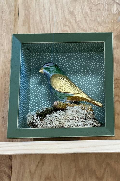 Cadre boite oiseau