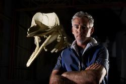 Dave - whale skeleton