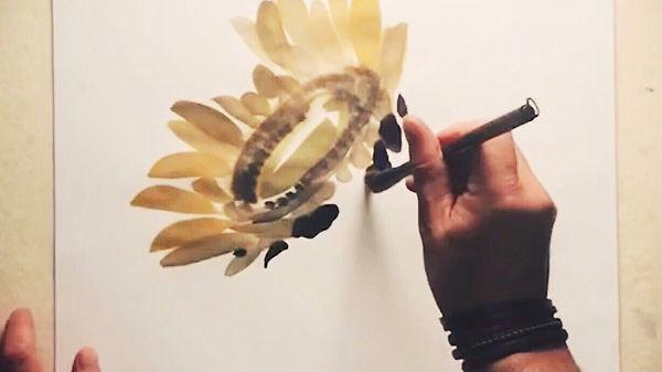 online_sunflower.jpg