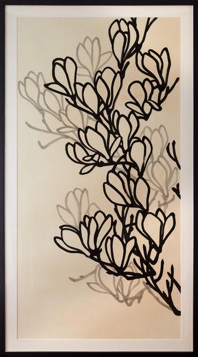 Series of Magnolia B
