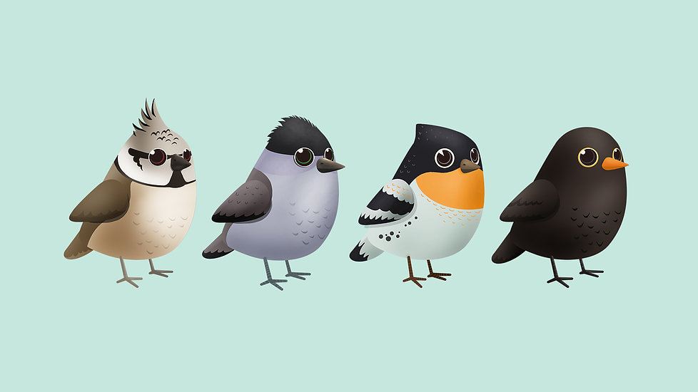 smallbird-bilde-2.jpg