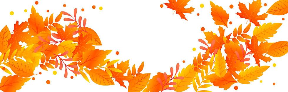 CheckoutwhatsNew_Autumn2.jpg