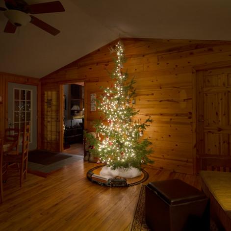 tree in cabin