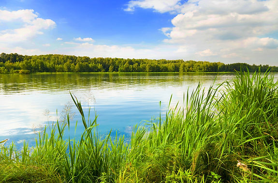 view of squaw lake minocqua wi
