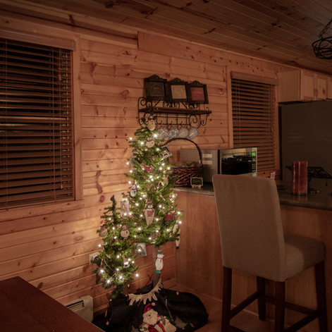 trees in room