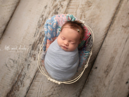 Little Sweet Cheeks Photography, LLC | Central IL, Newborn Photography | Newborn Session