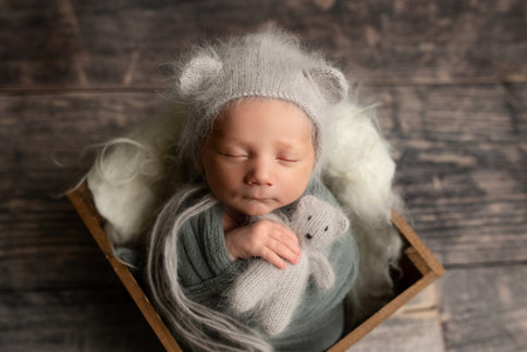 central illinois newborn photography