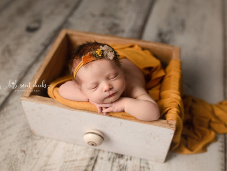 Little Sweet Cheeks Photography, LLC | Central IL, Newborn Photography | Washington, IL Newborn
