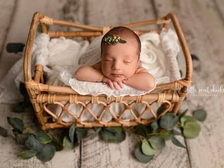 Little Sweet Cheeks Photography, LLC | Central IL, Newborn Photography | Metamora, IL