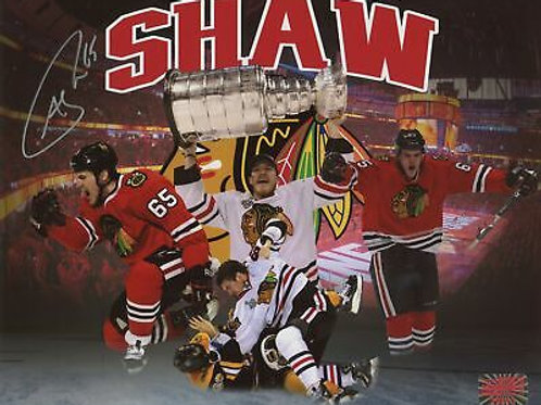 Andrew Shaw Chicago Blackhawks Signed Autographed Montage 8x10