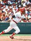 Carl Yastrzemski Boston Red Sox white jersey at bat 8x10 11x14 16x20 photo 838