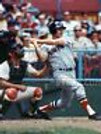 Carl Yastrzemski Boston Red Sox at bat the captain 8x10 11x14 16x20 photo 837