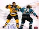 Bobby Robins Boston Providence Bruins Signed Fight vs Matt Pelech Sharks 8x10