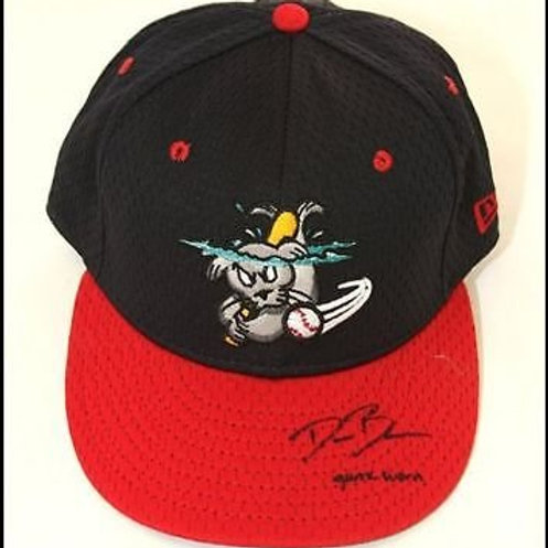 Dusty Brown Portland Sea Dogs Signed Alternate Game Hat