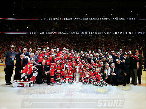 2015 Chicago Blackhawks Stanley Cup Champions 8x10 11x14 16x20 20x24 Photo 4402