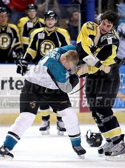 Adam Mcquaid Boston Providence Bruins fight punch  8x10 11x14 16x20 photo 0976