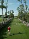 Arnold Palmer Masters tee shot 8x10 11x14 16x20 photo Augusta 007