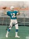 Bob Griese Miami Dolphins Signed Autographd 8x10 A