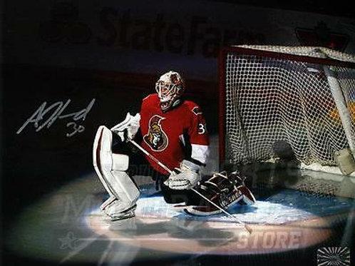 Andrew Hammond Ottawa Senators Signed Autographed Spotlight 8x10
