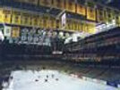 Boston Bruins Boston Garden game skate  8x10 11x14 16x20 photo 491