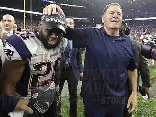 Bill Belichick James White Patriots Super Bowl LI 8x10 11x14 16x20 20x24  4950