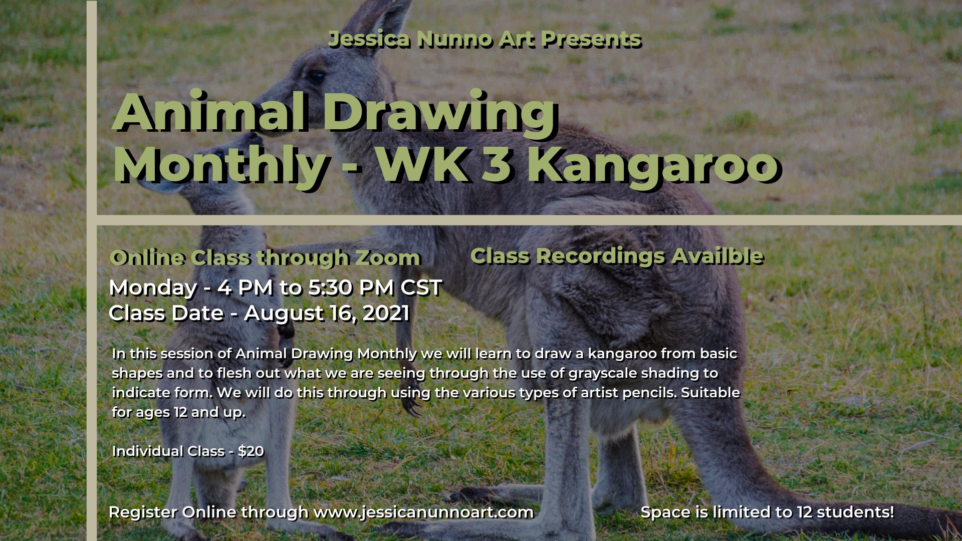 Animal Drawing - Desert - WK 3 Kangaroo
