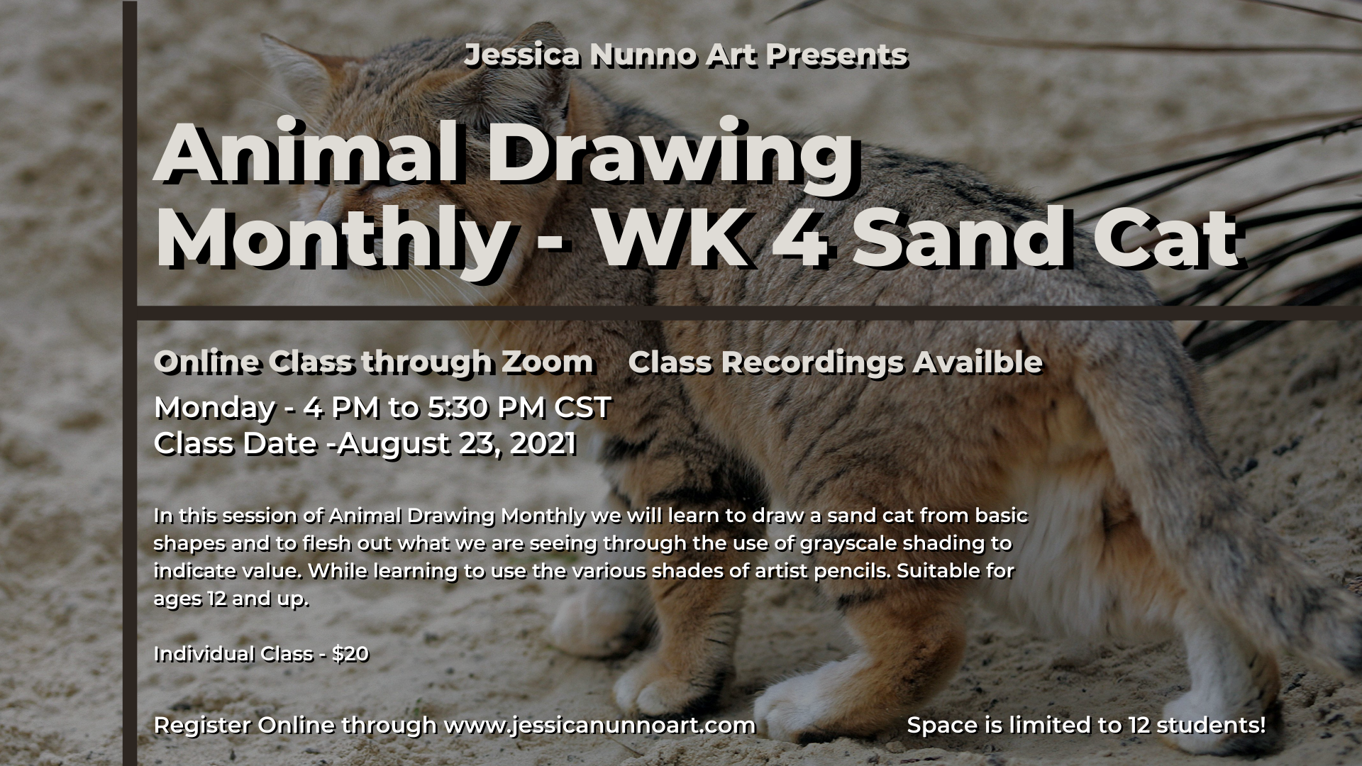 Animal Drawing - Desert - WK 4 Sand Cat