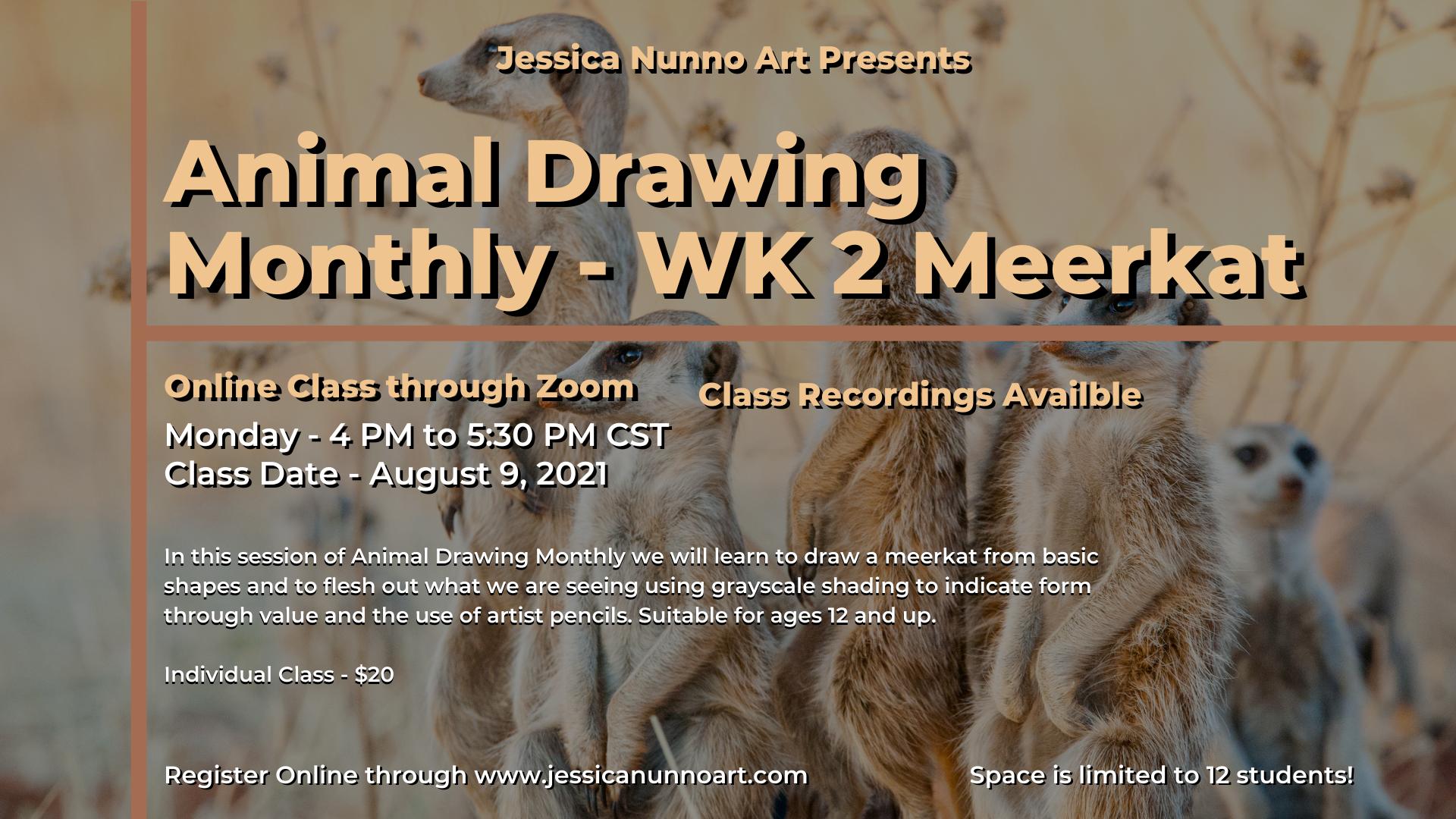 Animal Drawing - Desert - WK 2 Meerkat