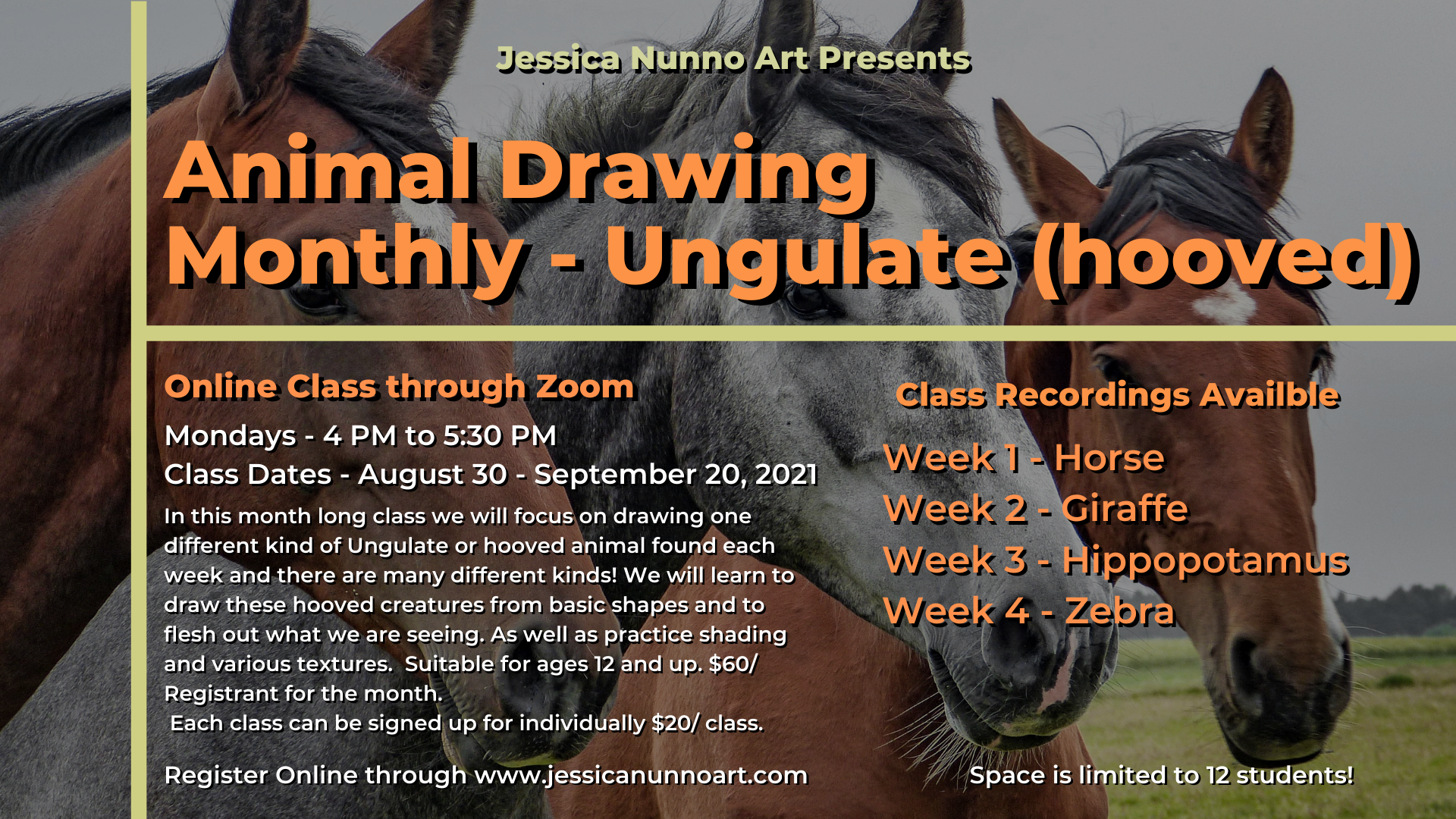 Animal Drawing Monthly - Ungulate