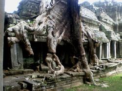 Camboya 212