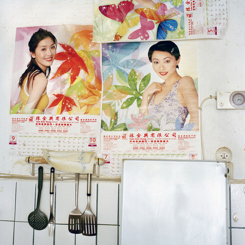 Hackenfleisch - The life of Chinese in Germany