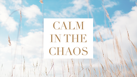 Calm in the Chaos Series Graphic.png