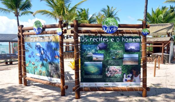 coral_vivo2_radarnoticias.com.br