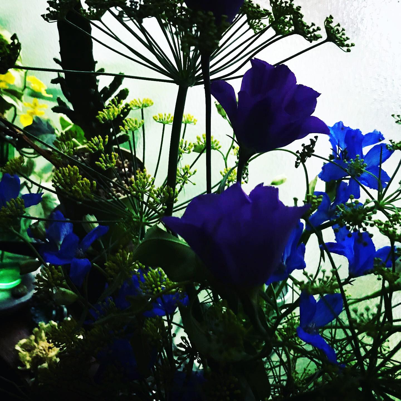 Koma presents 山頂瞑想茶屋 2nd Album '002'