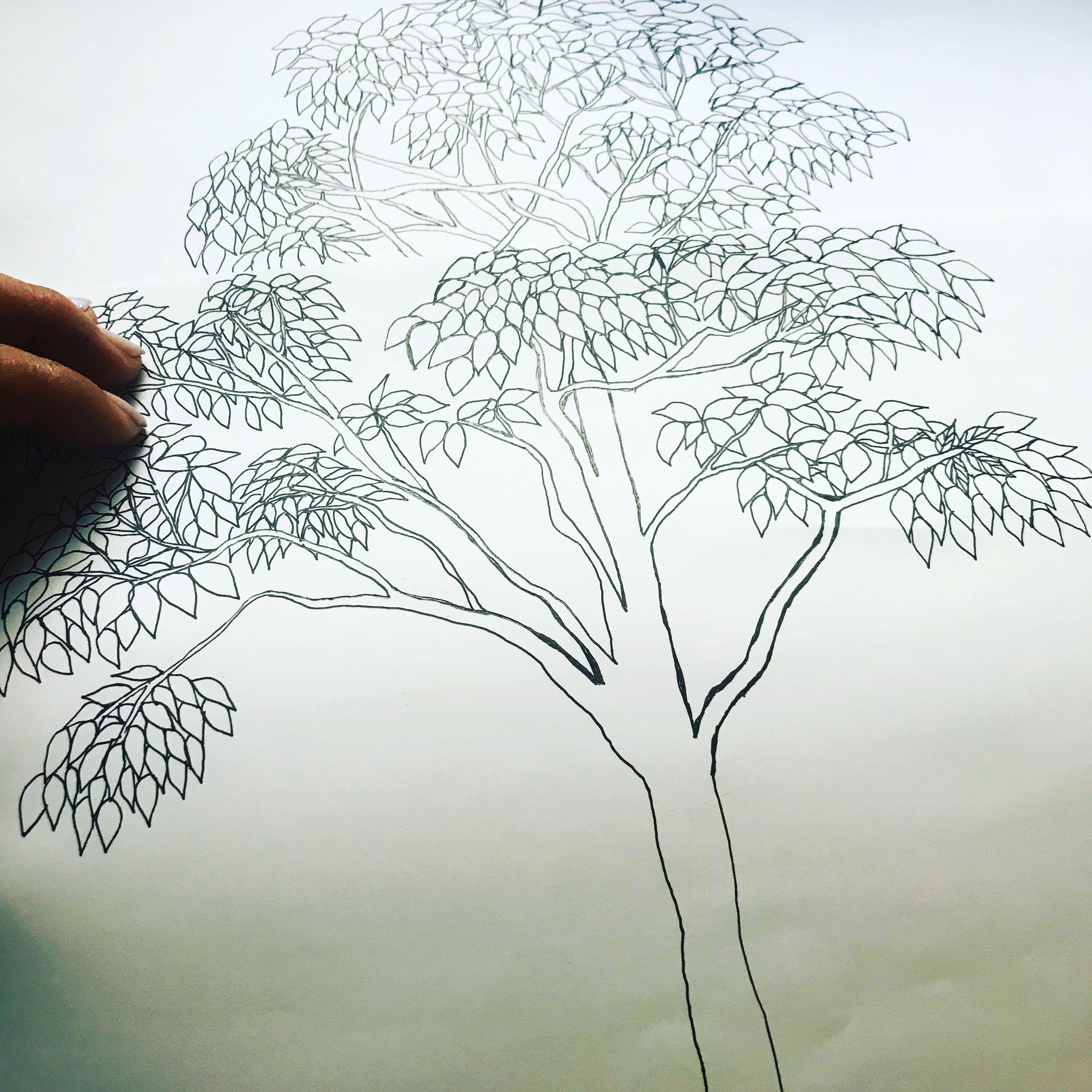 2018.植栽提案