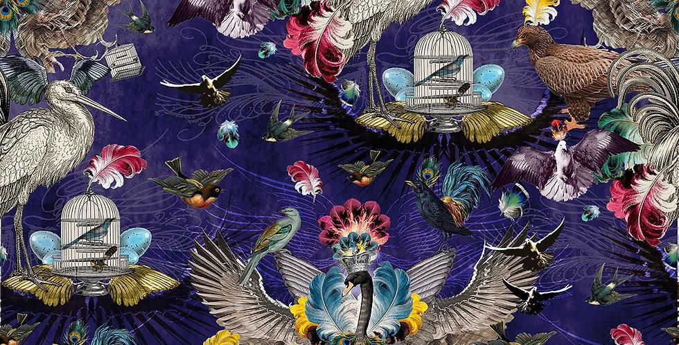 Cotton Velvet – Arrivée Des Oiseaux