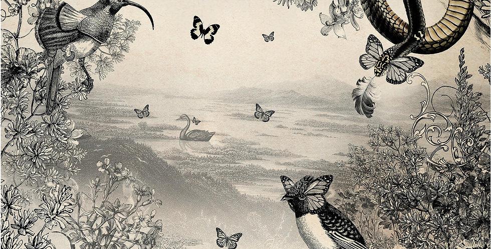 Cygnus et Serpentium - Mural