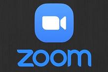 zoom%2520image_edited_edited.jpg